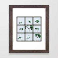 Maritime Pine Framed Art Print