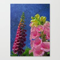 Two Foxglove Flowers W… Canvas Print