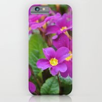 Along the Path iPhone 6 Slim Case