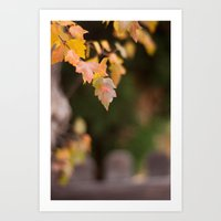 Autumn Orange Art Print