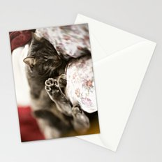 Pancho Stationery Cards