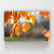 Embers II Laptop & iPad Skin