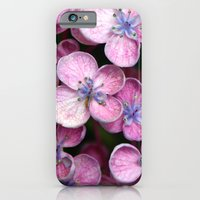 Purple Flowers iPhone 6 Slim Case