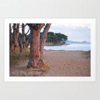 Salins Beach 8902  Art Print