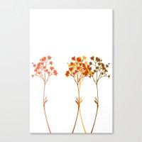 Sensation D'automne Canvas Print
