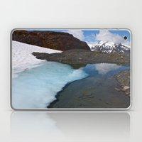 Ice Lake Laptop & iPad Skin