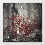Heart Of Winter Canvas Print