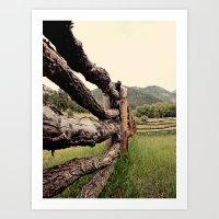 Colorado, fence, color Art Print