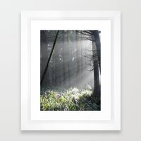 Oregon Sun Framed Art Print