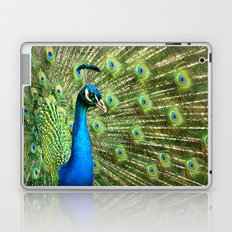 Display of Affection Laptop & iPad Skin