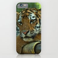 Baby Tiger iPhone 6 Slim Case