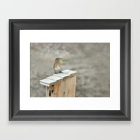 Build Your Nest Framed Art Print