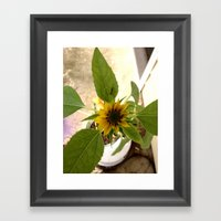Flower Spider Framed Art Print