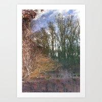 Lake Forest Art Print