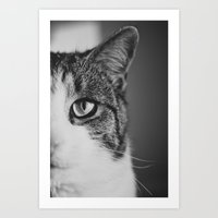 Cat Eye Art Print
