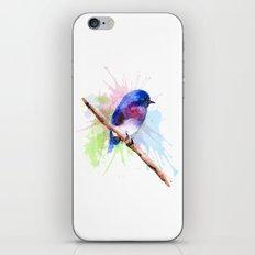 Small bird iPhone & iPod Skin