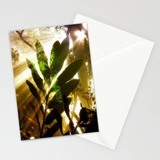 Sunbeams Stationery Cards