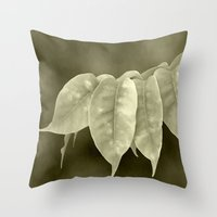 The curtain Throw Pillow