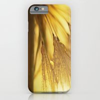 iPhone & iPod Case featuring Dandelion Light by Tanja Riedel