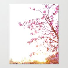 Sun-Drenched Canvas Print