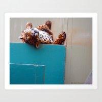 Reclining Jaguar Art Print