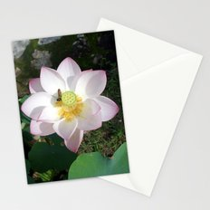 Lotus 1 Stationery Cards