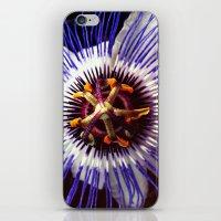 passionflower / Passiflora incarnata  iPhone & iPod Skin