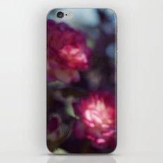promise iPhone & iPod Skin