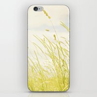 Sweet grass iPhone & iPod Skin