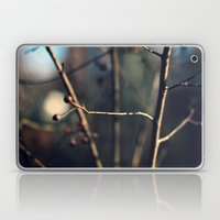 Winter Waits Laptop & iPad Skin