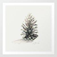 Pinecone Watercolor Art Print