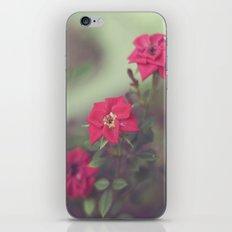 With Love iPhone & iPod Skin