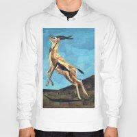 Gazelle Hoody