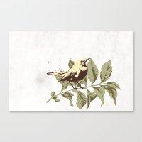 the Mokingbird Canvas Print