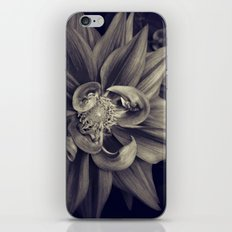 Touched iPhone & iPod Skin