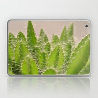 Prickly Laptop & iPad Skin