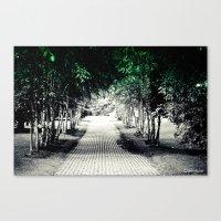 Where Does The Path Lead… Canvas Print