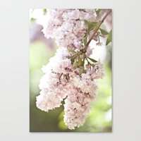 take me to your june Canvas Print