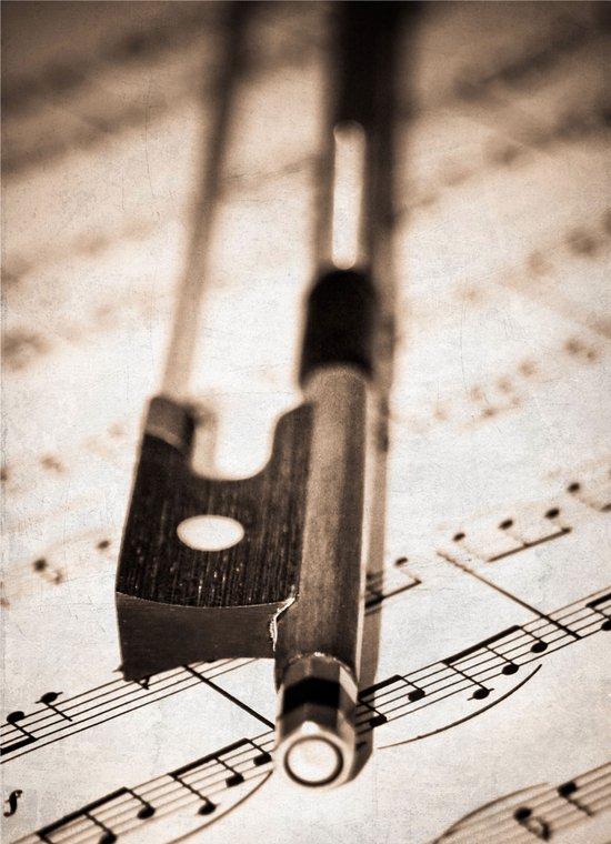 Violin Bow Art Print