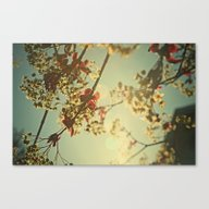 Welcome Spring   02 Canvas Print