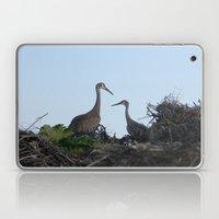 Sandhill Crane pair Laptop & iPad Skin