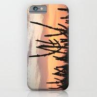 Cactus Sunset iPhone 6 Slim Case