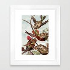 Flying fish 2 Framed Art Print