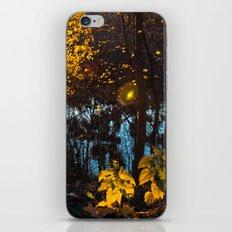 Something Magic iPhone & iPod Skin