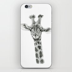Young Giraffe  G2012-053 iPhone & iPod Skin