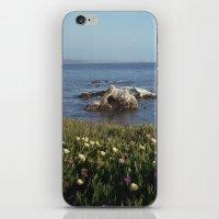 Shell Beach California iPhone & iPod Skin
