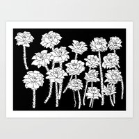 Black And White Roses Art Print