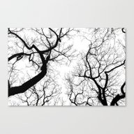 Canvas Print featuring Black And White Tree Top… by Belkat
