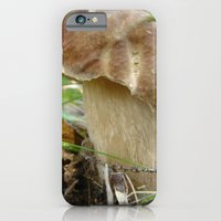 iPhone & iPod Case featuring Wild mushroom (Boletus edulis, porcini) by Flysmile