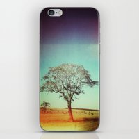 Light Tree iPhone & iPod Skin